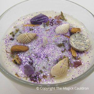 Pisces Zodiac Jar Candle, Star Sign Gift from The Magick Cauldron
